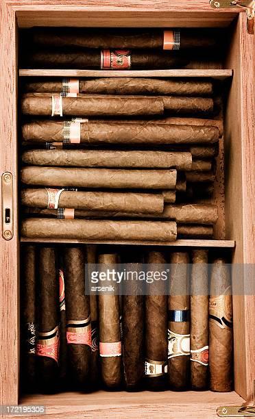 Sigaro spazio a umidità costante per sigari