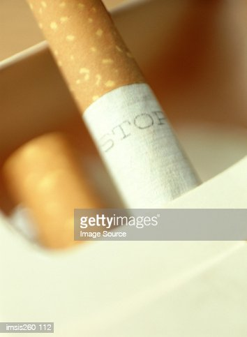 Cigarettes in packet : Stock Photo