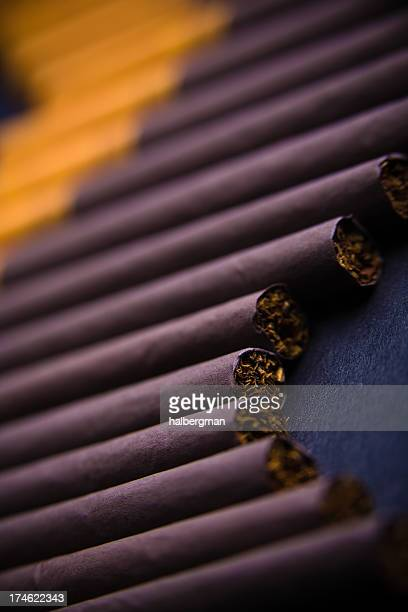 Cigarettes lined up in a row