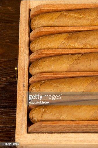 cigars : Stock Photo