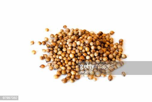 Cilantro Seeds on white