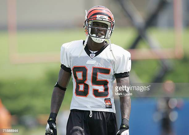 Cincinnati Bengals wide receiver Chad Johnson during training camp practice at Toyota Stadium on July 30 2006 in Georgetown Ky