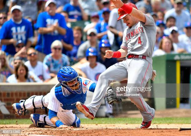 Cincinnati Reds left fielder Scooter Gennett is tagged out at home plate by Chicago Cubs catcher Alex Avila during the game between the Cincinnati...