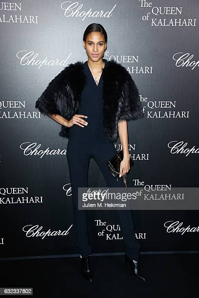 Cindy Bruna attends The Garden of Kalahari Movie Presentation at Theatre du Chatelet on January 21 2017 in Paris France