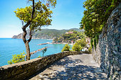 Cinque Terre: Hiking trail to Monterosso al Mare in early summer, Liguria Italy Europe