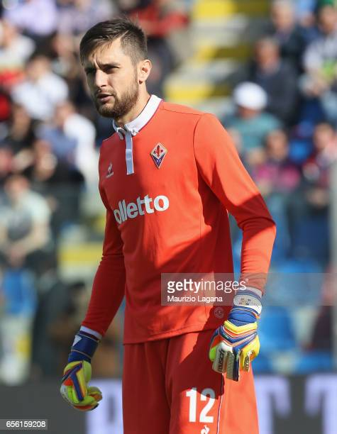 Ciprian Tatarsanu of Fiorentina during the Serie A match between FC Crotone and ACF Fiorentina at Stadio Comunale Ezio Scida on March 19 2017 in...