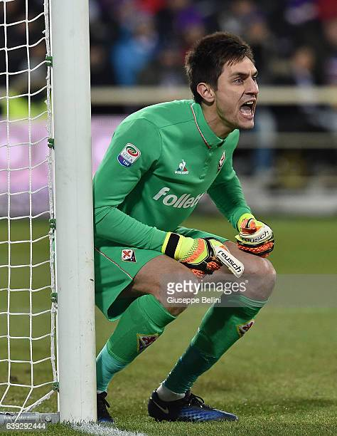 Ciprian Tatarusanu of ACF Fiorentina in action during the Serie A match between ACF Fiorentina and Juventus FC at Stadio Artemio Franchi on January...