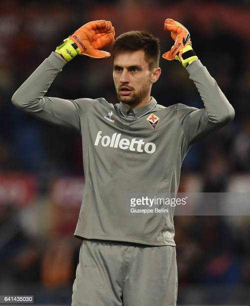 Ciprian Tatarusanu of ACF Fiorentina in action during the Serie A match between AS Roma and ACF Fiorentina at Stadio Olimpico on February 7 2017 in...