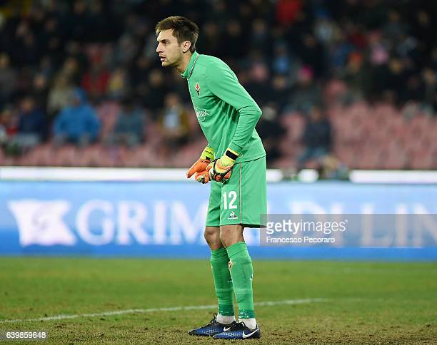 Ciprian Tatarusanu of ACF Fiorentina in action during the TIM Cup match between SSC Napoli and ACF Fiorentina at Stadio San Paolo on January 24 2017...