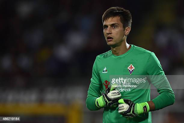 Ciprian Tatarusanu of ACF Fiorentina looks on during the Serie A match between Torino FC and ACF Fiorentina at Stadio Olimpico di Torino on August 30...