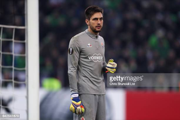 Ciprian Tatarusanu of ACF Fiorentina looks on during the UEFA Europa League Round of 32 first leg match between Borussia Moenchengladbach and ACF...
