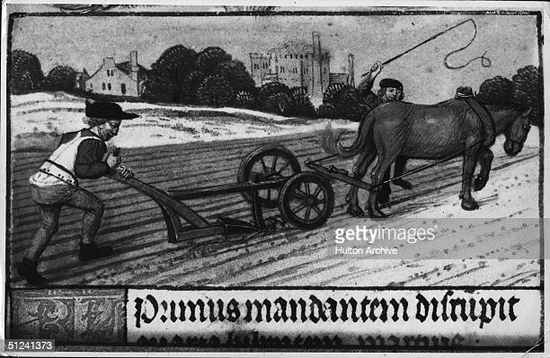 Circa 1450 Medieval farmers plough a field Latin text below picture