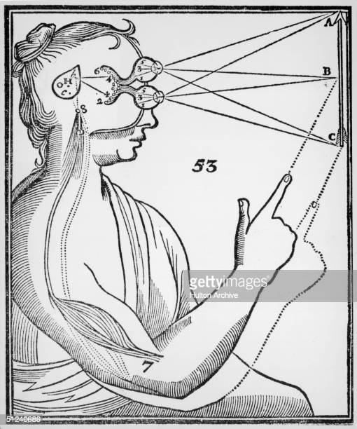 Circa 1633 A sketch from Rene Descartes 'De Homine Figuris' depicting brain function The pineal gland is the link between vision and a resulting...