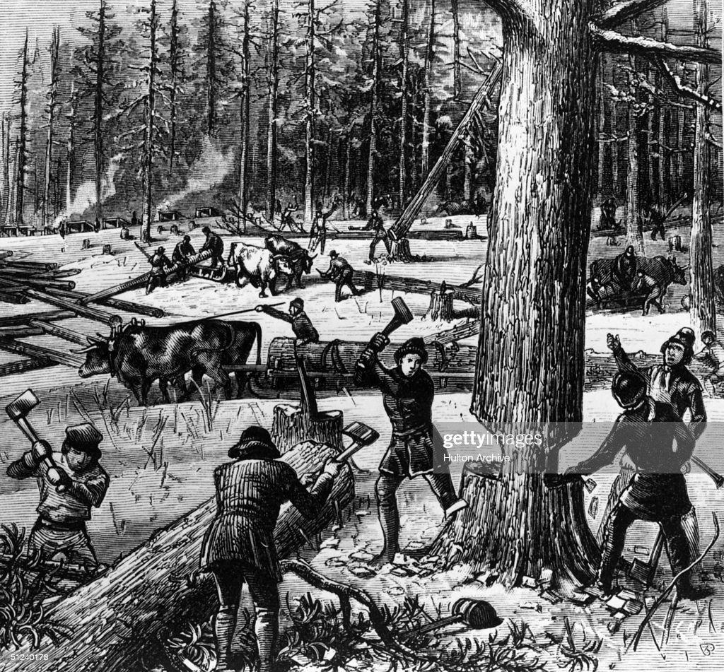 Circa 1700 A group of men cutting down timber