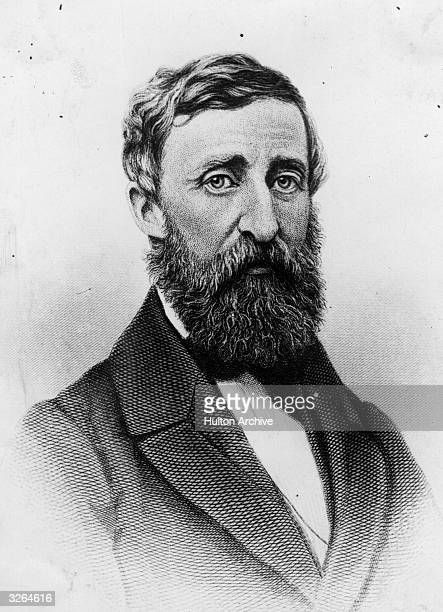 Henry David Thoreau US essayist poet and naturalist who was known to be a recluse