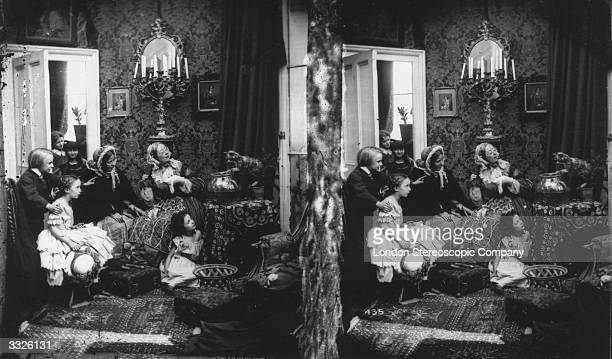 A Victorian family watching a cat play with a goldfish bowl London Stereoscopic Company Comic Series