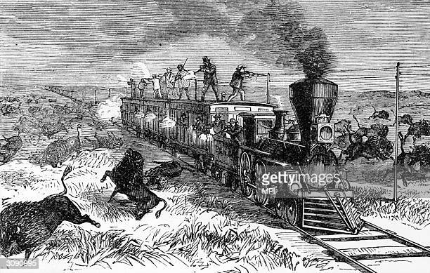 A group of men killing buffalo from the top of a railroad train