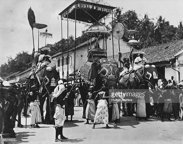 Elephants carrying shrines and worshippers in a Buddhist procession in Colombo Ceylon