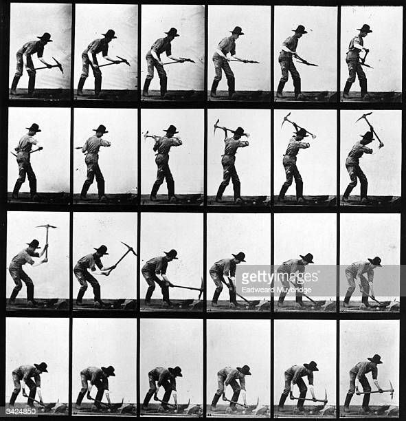 A series of photographers taken by the AngloAmerican photographer Eadweard Muybridge as a study of movement He used twentyfour cameras to capture a...