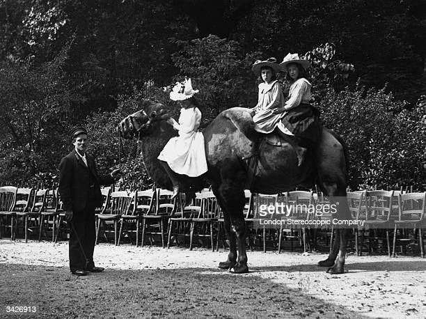 Three young girls taking a ride on a camel in London Zoo one girl is sitting on its neck A keeper has hold of the camel