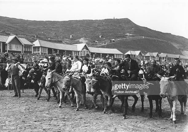 The starting line of a donkey race on the beach at Scarborough North Yorkshire