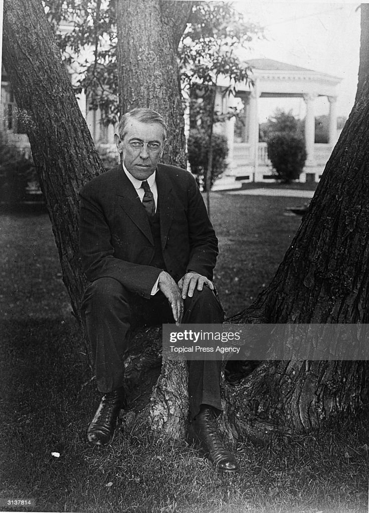Thomas <a gi-track='captionPersonalityLinkClicked' href=/galleries/search?phrase=Woodrow+Wilson&family=editorial&specificpeople=92997 ng-click='$event.stopPropagation()'>Woodrow Wilson</a> (1856 - 1924) 28th President of the United States in casual pose sitting on a tree trunk.