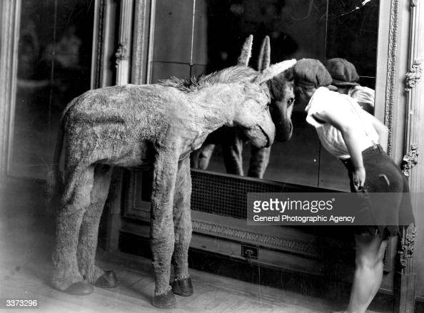 Miss Morrissey a chorus girl with the Piccadilly Hotel Revue looking into a mirror with Hank the mule popular for his 'He Haw' songs and dances