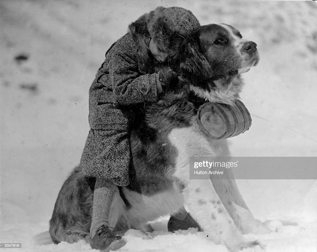 A small child hugging a large St Bernard dog in the snow.