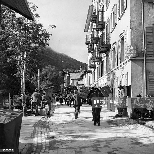 A mule carries paniers through the streets of Zermatt in Switzerland