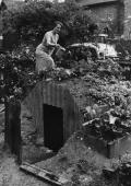 A Clapham south London resident watering the vegetables she has planted on the roof of her Anderson shelter built in the garden