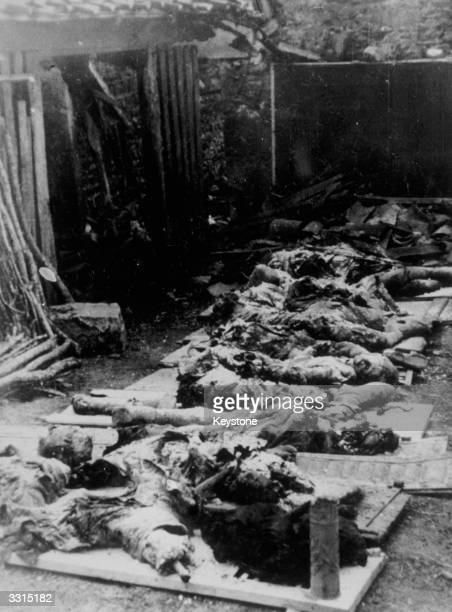 A line of charred corpses of French men women and children from OradoursurGlane who were either shot or burnt to death by SS troops in one of the...