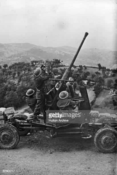 British 8th Army mobile antiaircraft gun in action in Italy