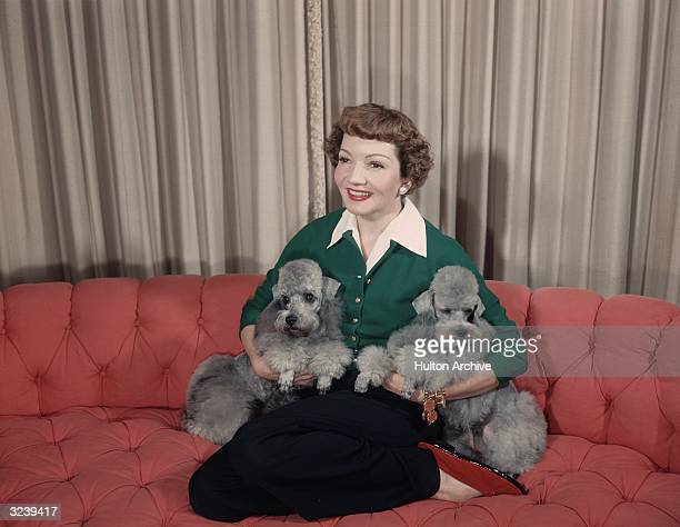 Portrait of American actor Claudette Colbert smiling as she kneels on a salmoncolored couch and cradles her two identical grey poodles under her arms...