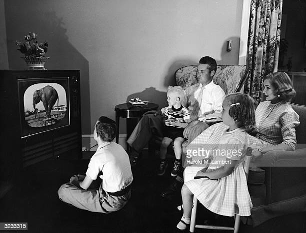 A family of five watches a television program featuring a trained elephant while sitting together in their living room