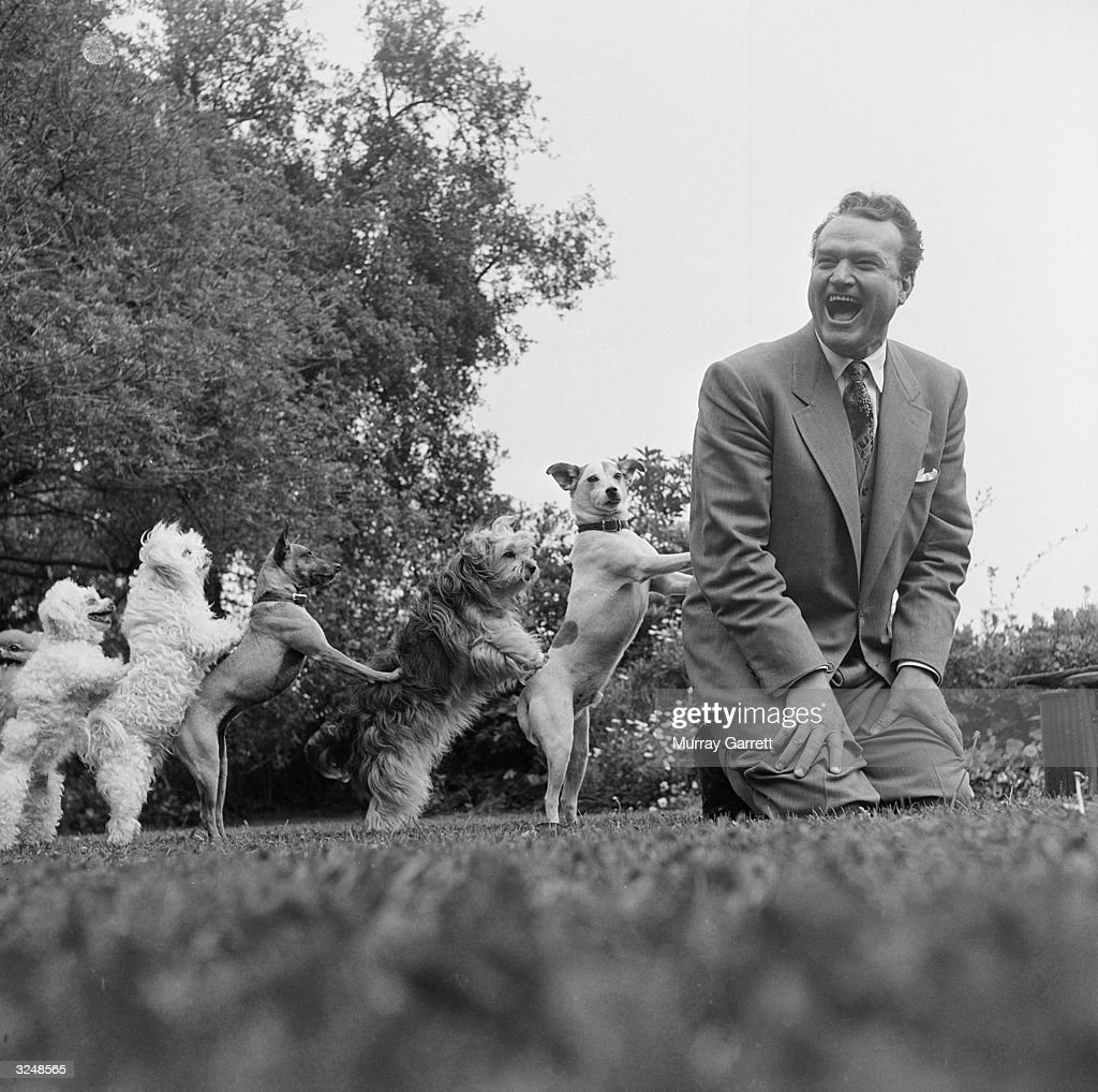 American comedian Red Skelton (1913 - 1997) kneels on the ground, laughing as a line of dogs stand on their hind legs behind him, early 1950s.