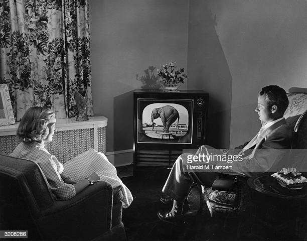A young couple watches television in a living room