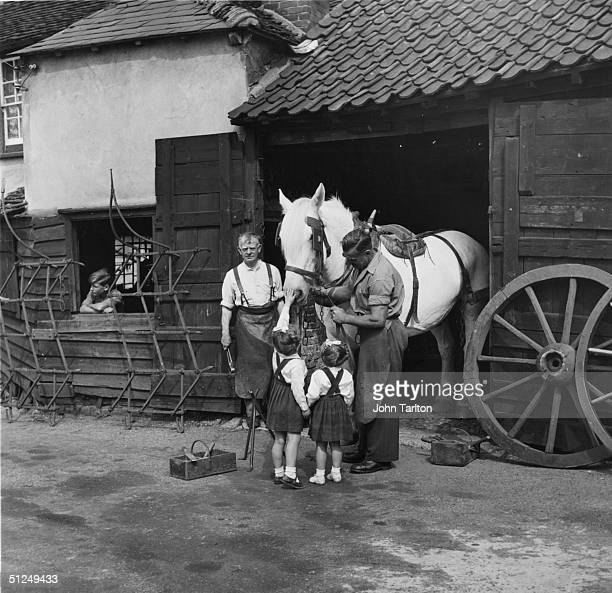 Circa 1955 Blacksmith Henry Dorken receivces some help from two little girls at Chipping HIll near Witham in Essex where his services are still...