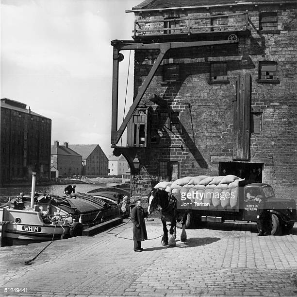 Circa 1955 British Waterways Transport unloading cocoa beans for Rowntrees factory at Wakefield in Yorkshire A barge is moored on the quayside with a...