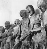 Twentieth century mummies on display in the vault of the Panteon cemetery at Guanajuato on the summit of Trozado Mexico