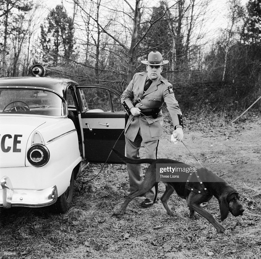 A New York State Trooper arrives on the scene with a trained police bloodhound