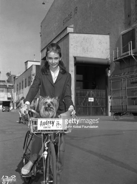 Film star Audrey Hepburn cycling between film stages with her beloved pet Yorkshire terrier 'Mr Famous'