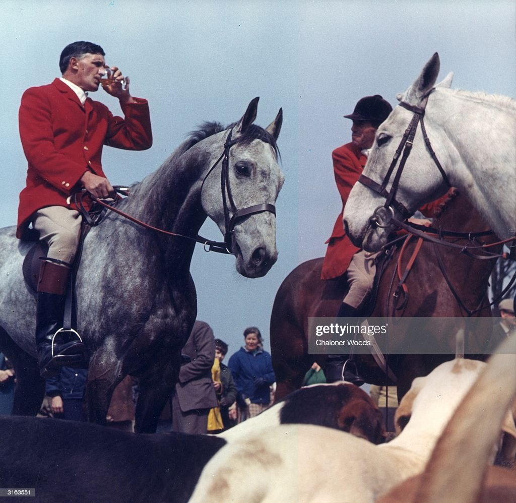 Fox hunters, mounted on horseback, pause for a tipple during a hunt.