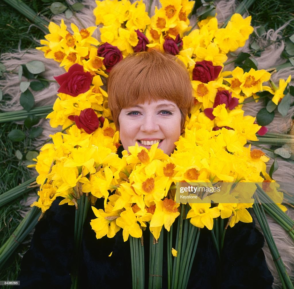 Image result for cilla images
