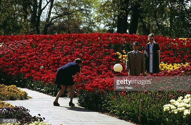 Tourists taking photographs amongst the red tulips at the 'Planten und Blumen' Hamburg's botanical gardens In Germany book
