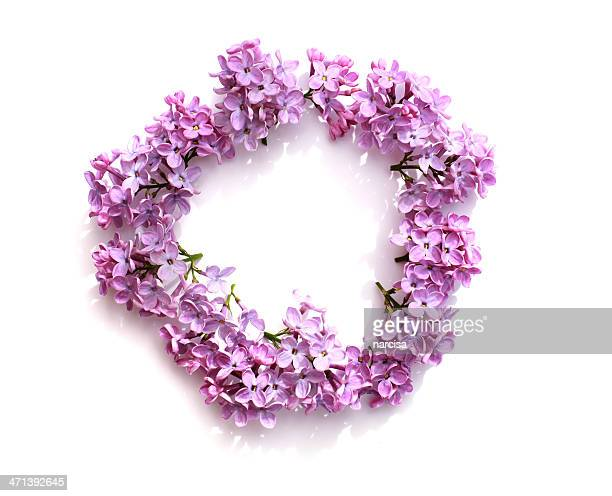 Circle of lilac flowers
