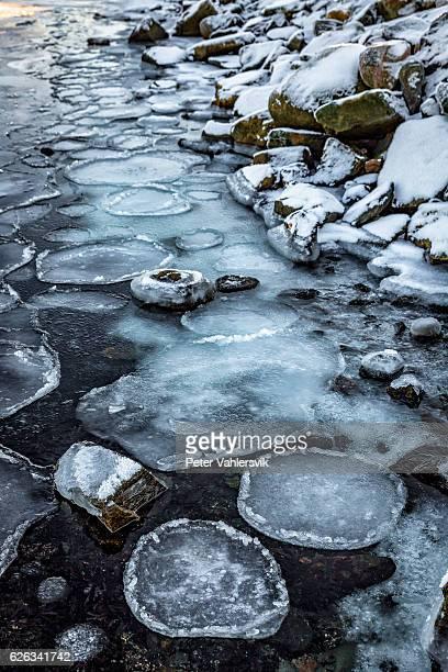 Circular ice flakes on seashore