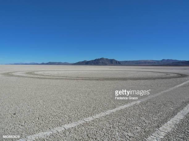 Circular Tire Tracks On Desert Floor, Nevada
