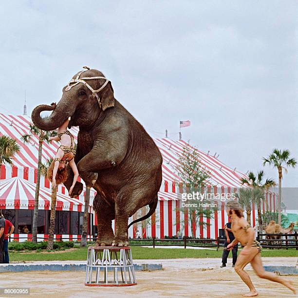 Circus elephant and performers