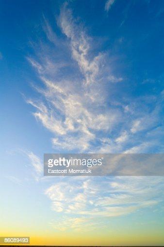 Cirrus clouds, sunrise, Valdez Pen., Argentina : Stock Photo