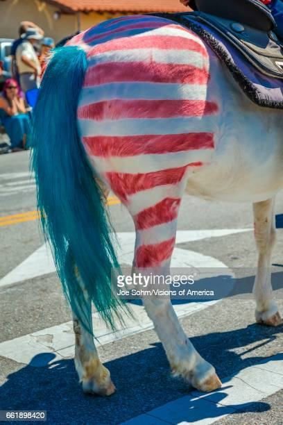 Citizens of Ojai California celebrate Independence Day horse with red and white stripes